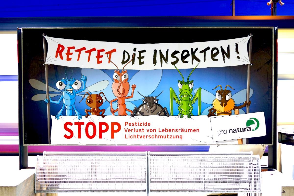 Rettet die Insekten! Stopp Pestizide, Verlust von Lebensräumen und Lichtverschmutzung. pro natura
