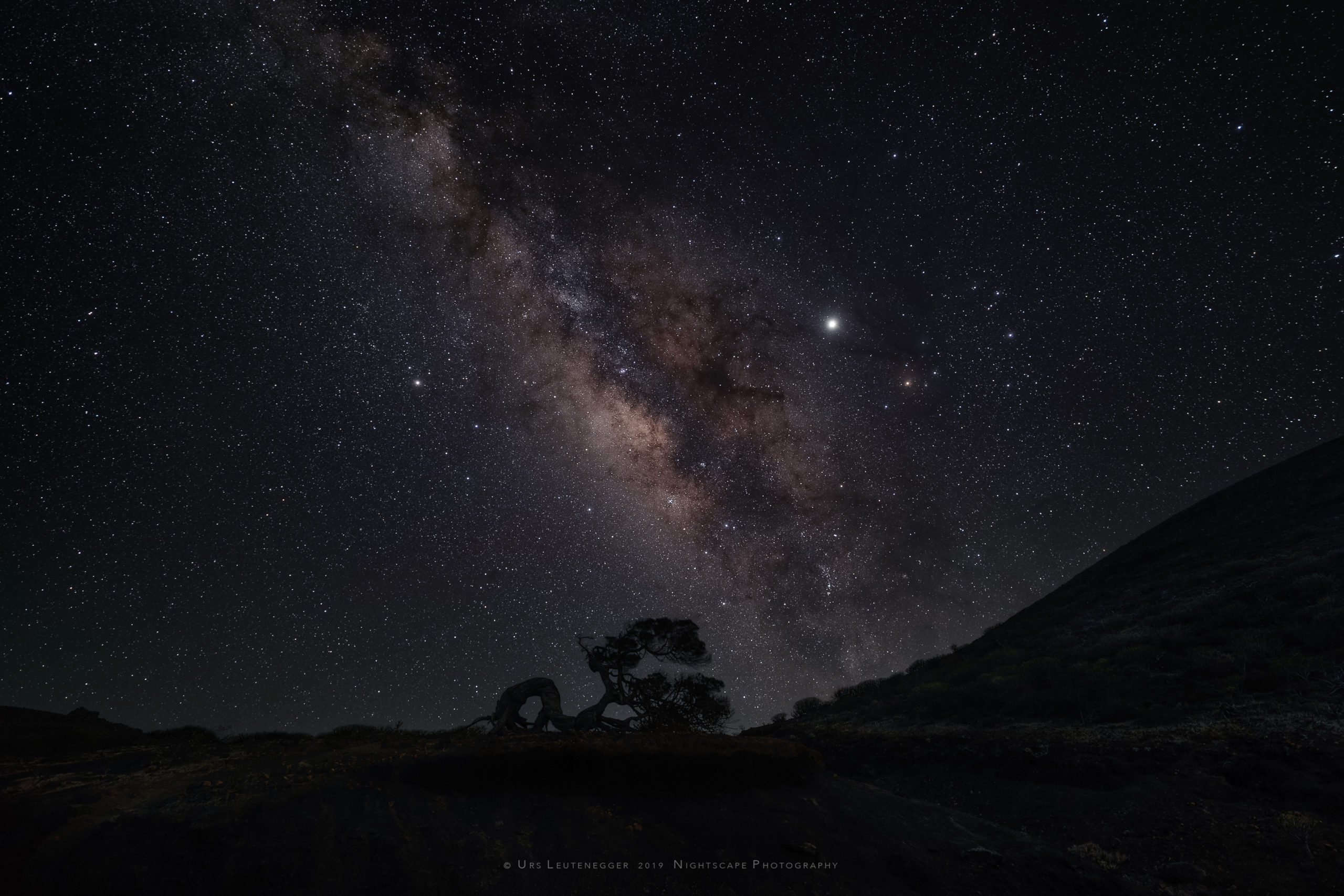 Jupiter close to Antares, Scorpio; Saturn in Sagittarius, galactic center of the Milky Way. Phoenician Juniper silhouette at horizon on El Hierro. No soft focus applied.