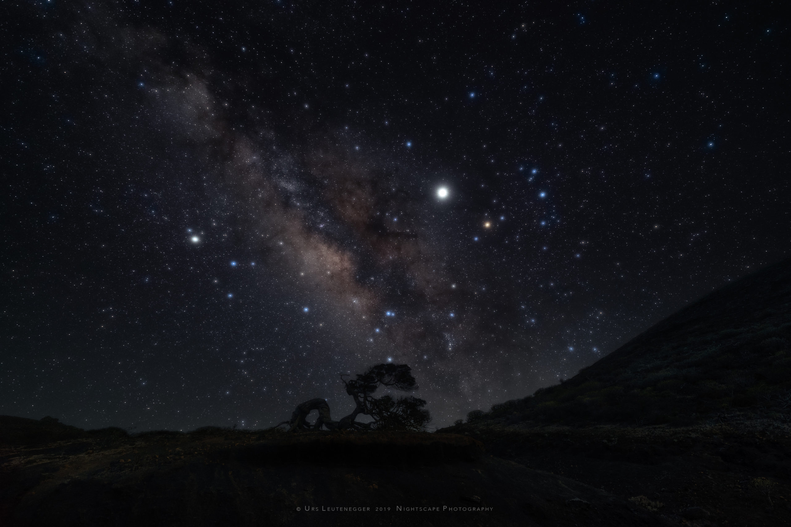 Soft focus allows for better visibility of the bright against the faint stars. Jupiter close to Antares, Scorpio; Saturn in Sagittarius, galactic center of the Milky Way. Phoenician Juniper silhouette at horizon on El Hierro.
