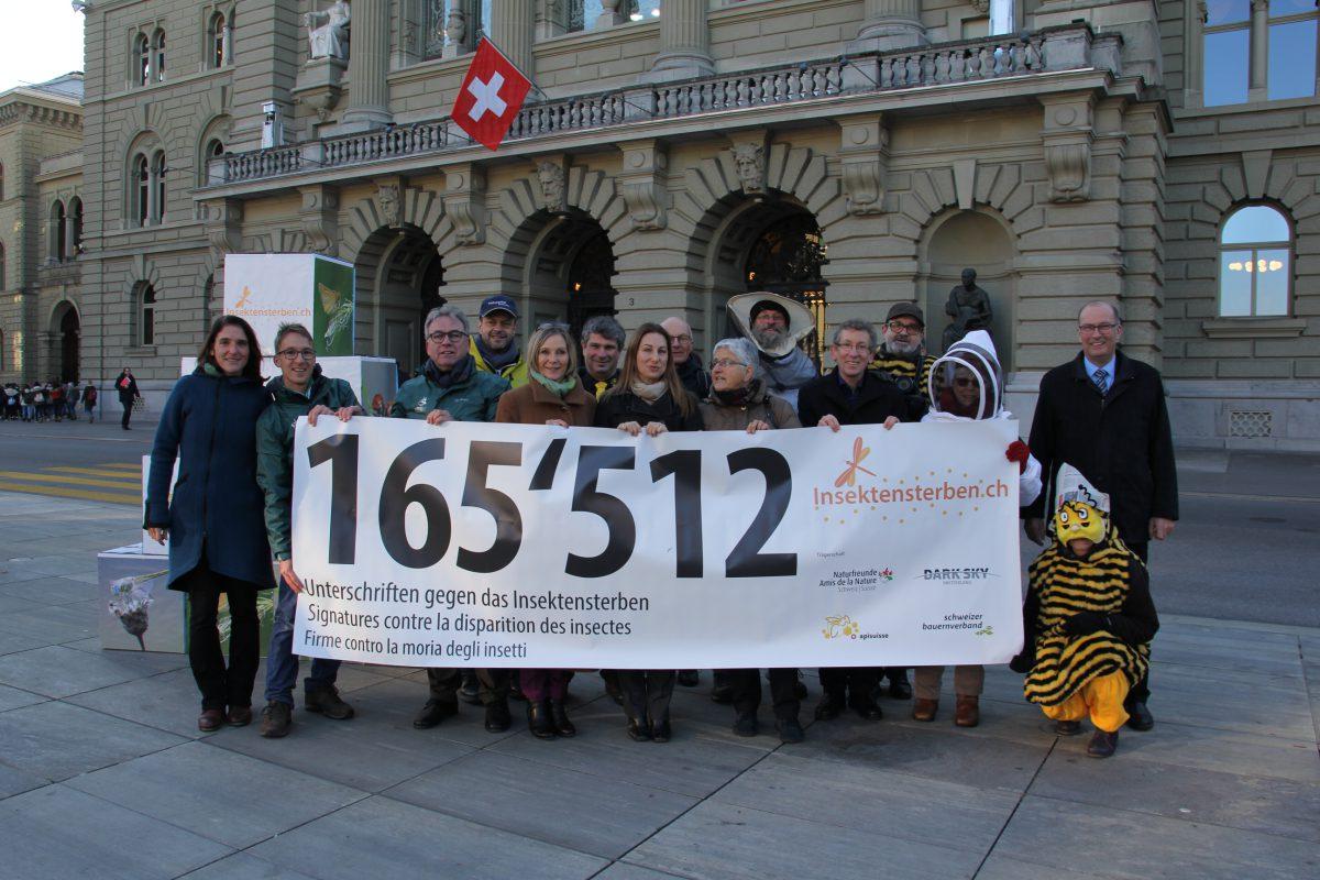 Consegnata oggi a Berna con 165'512 firme la petizione «chiediamoci perché scompaiono gli insetti»